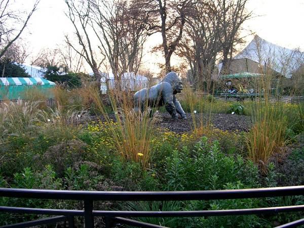 Лондонский зоопарк небольшой